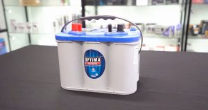best dual purpose marine battery